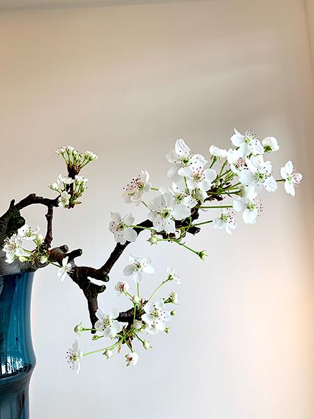 春のクリアリング・メソッド 整合&統合クリアリング_e0243332_12373850.jpeg