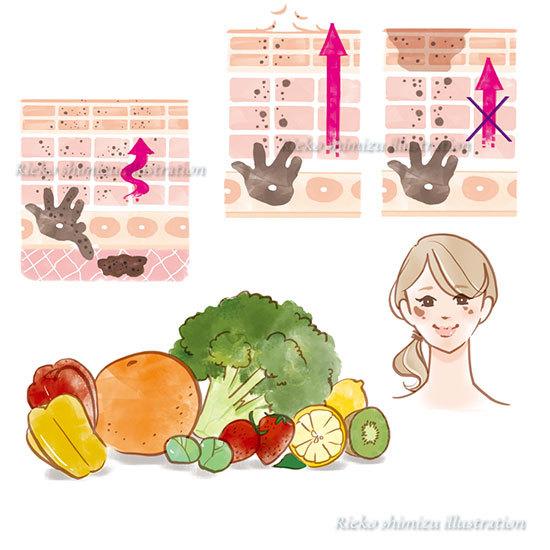 会報誌OZIOBeauty-肌図、食べ物イラスト_f0227738_11482756.jpg