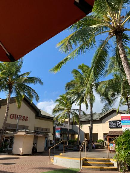 ハワイ NO4 3日目_a0279743_18335560.jpg