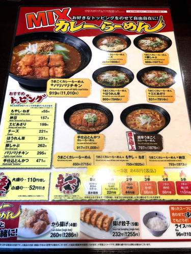 CoCo壱番屋 松阪パワーセンター店_e0292546_23344209.jpg