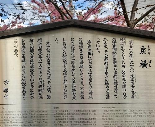 西陣まいづる新作猫名古屋帯とモデルさん・京都の河津桜。_f0181251_18194495.jpg