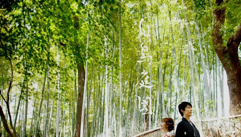 白鳥庭園(その1)_c0112559_08100290.jpg