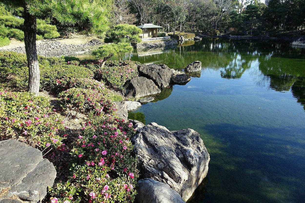 白鳥庭園(その1)_c0112559_08174076.jpg