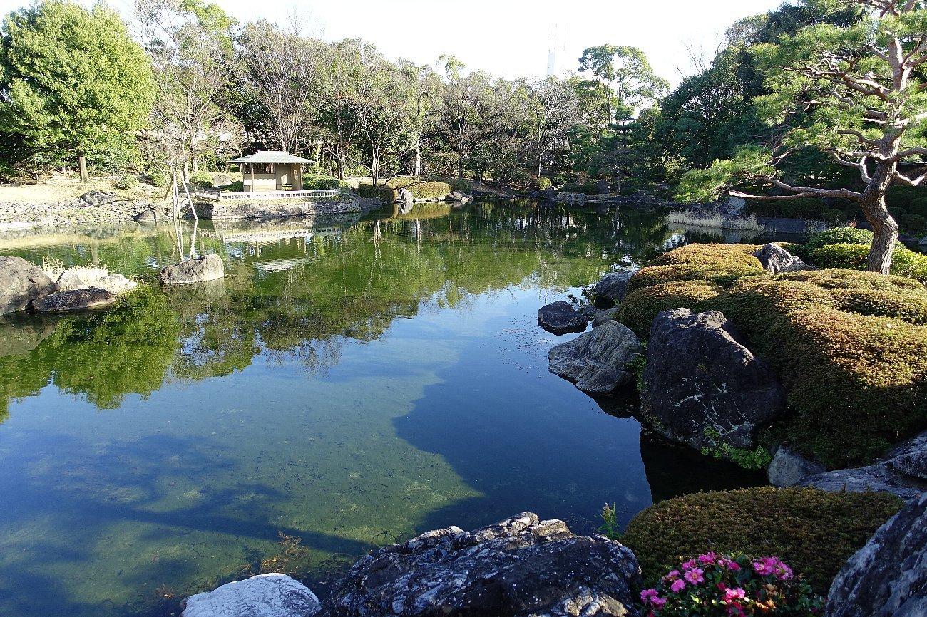 白鳥庭園(その1)_c0112559_08183013.jpg