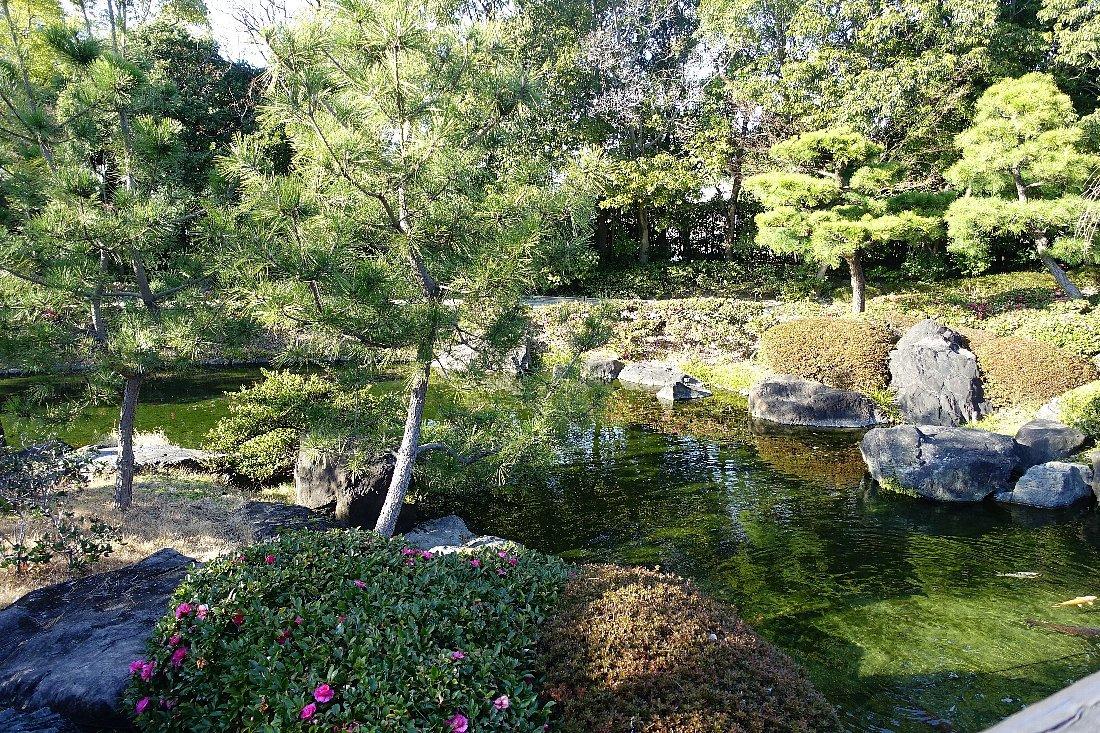 白鳥庭園(その1)_c0112559_08185451.jpg