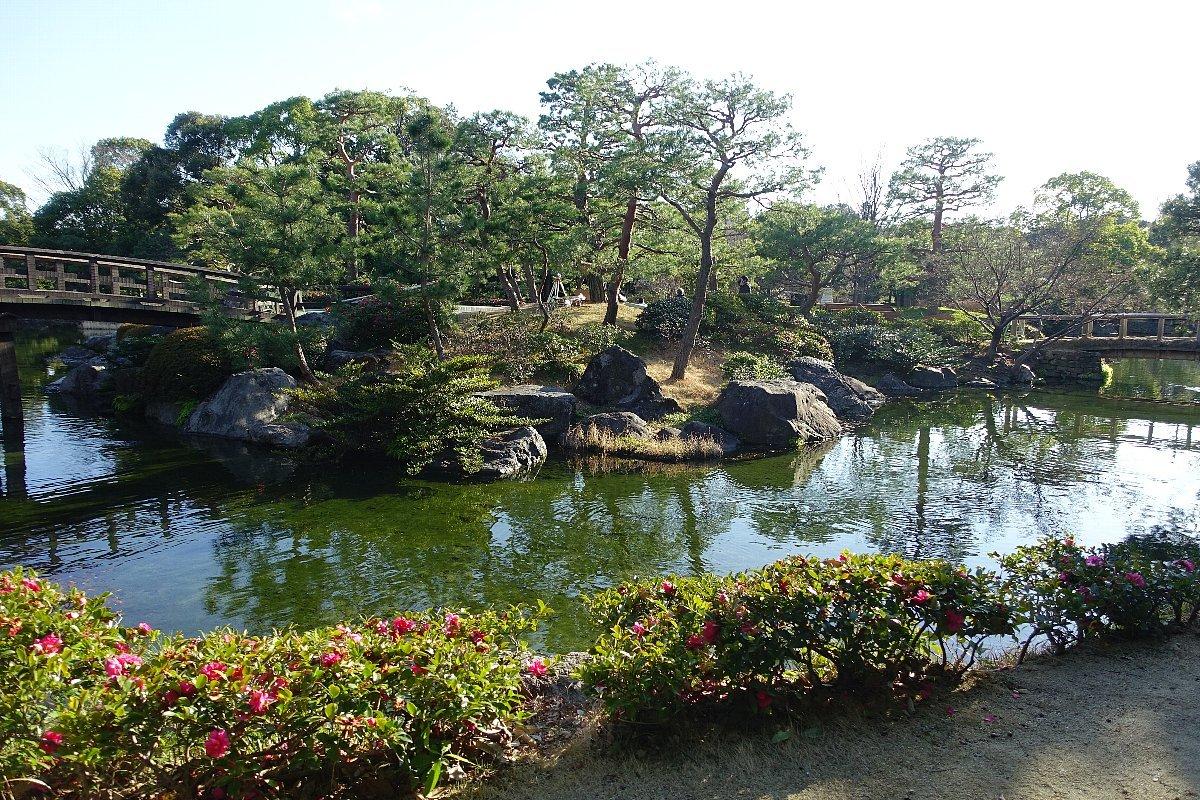 白鳥庭園(その1)_c0112559_08191988.jpg