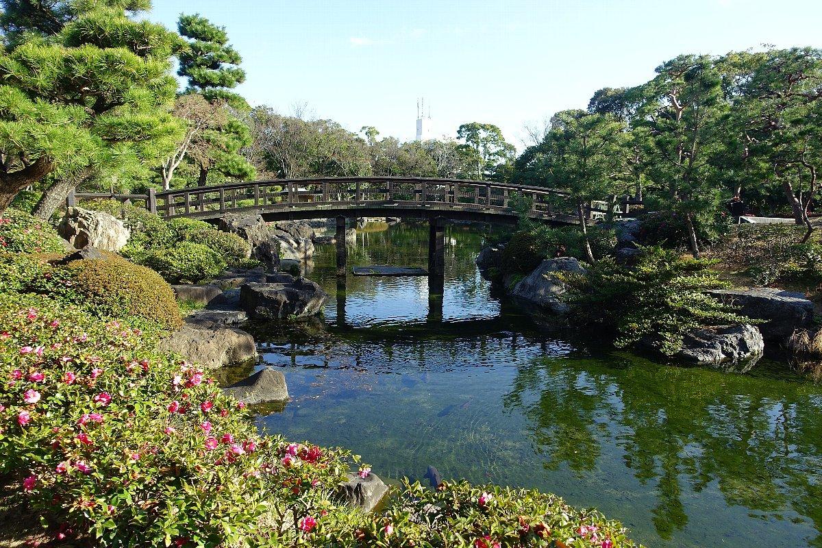 白鳥庭園(その1)_c0112559_08194015.jpg