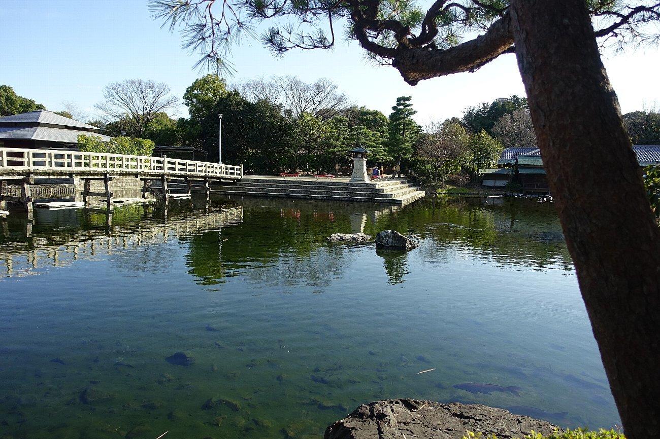 白鳥庭園(その1)_c0112559_08210993.jpg