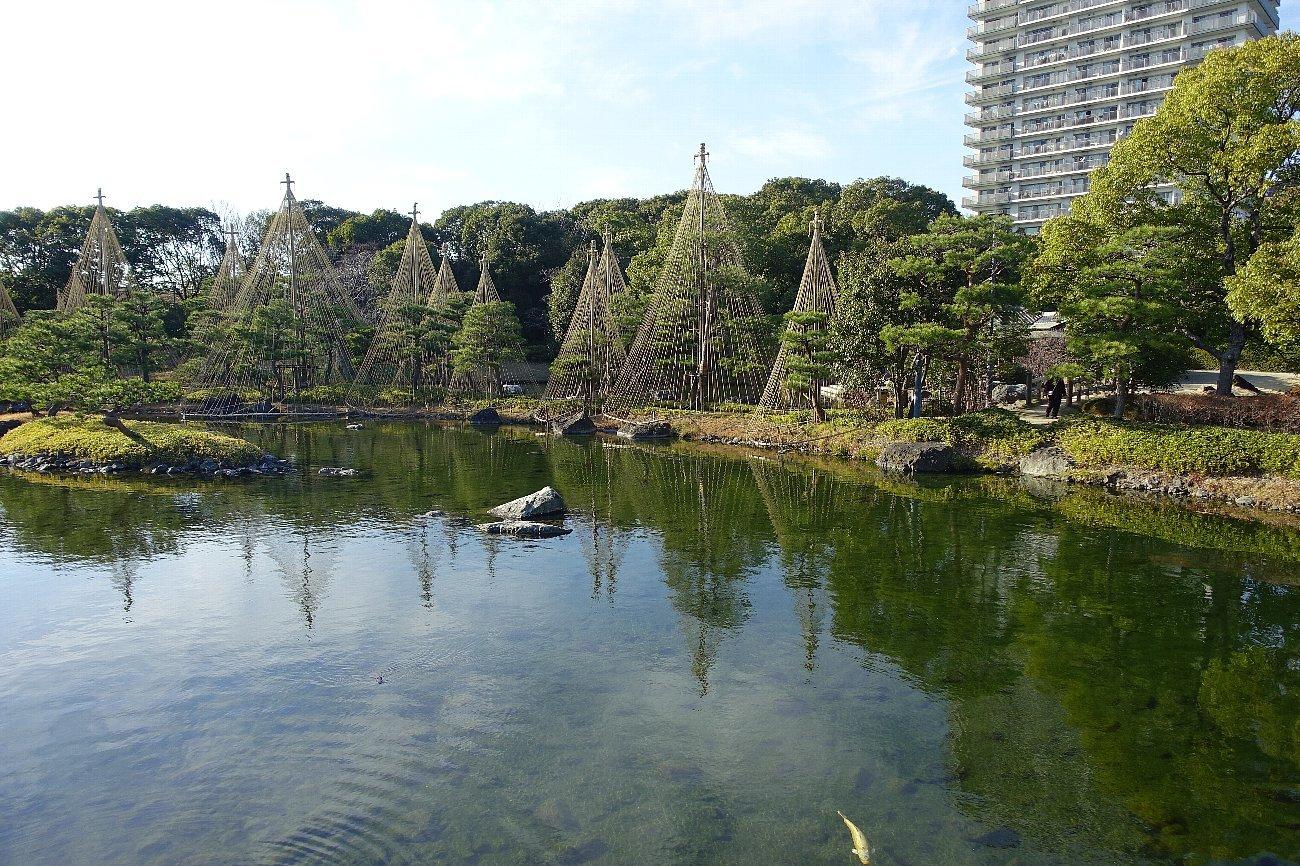白鳥庭園(その1)_c0112559_08235483.jpg