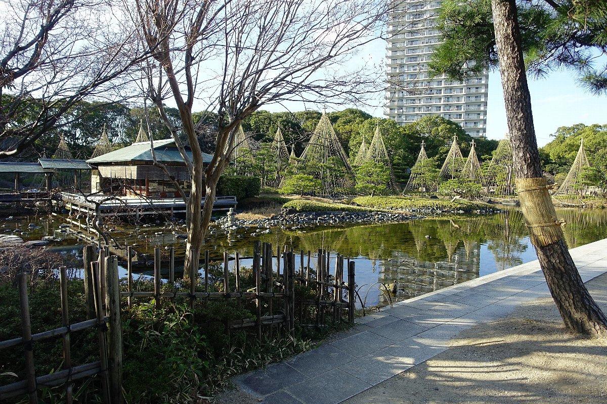 白鳥庭園(その1)_c0112559_08243430.jpg