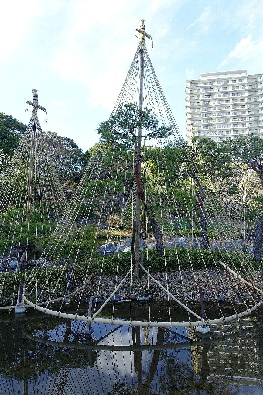 白鳥庭園(その1)_c0112559_08250252.jpg