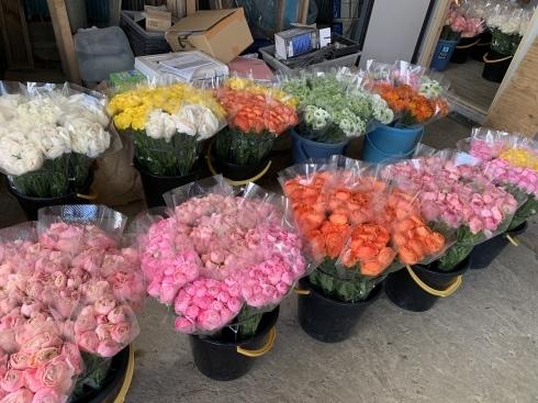 週末に沢山の花のご予約_b0137969_05284819.jpeg