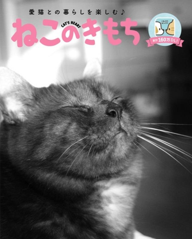 猫の気持ちアプリ_a0333195_22204735.jpg