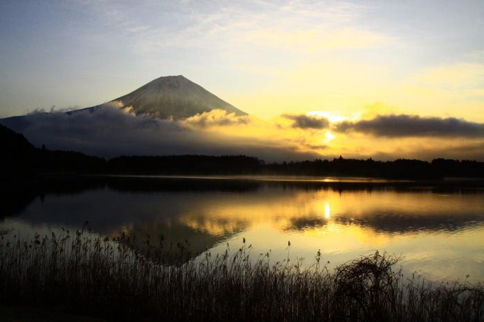令和2年3月の富士 (3) 田貫湖の日の出の富士_e0344396_15470958.jpg
