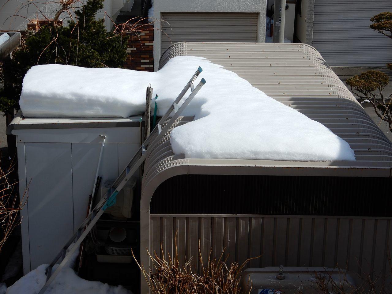 家の前の歩道も車道も積雪がゼロになりました_c0025115_23291079.jpg