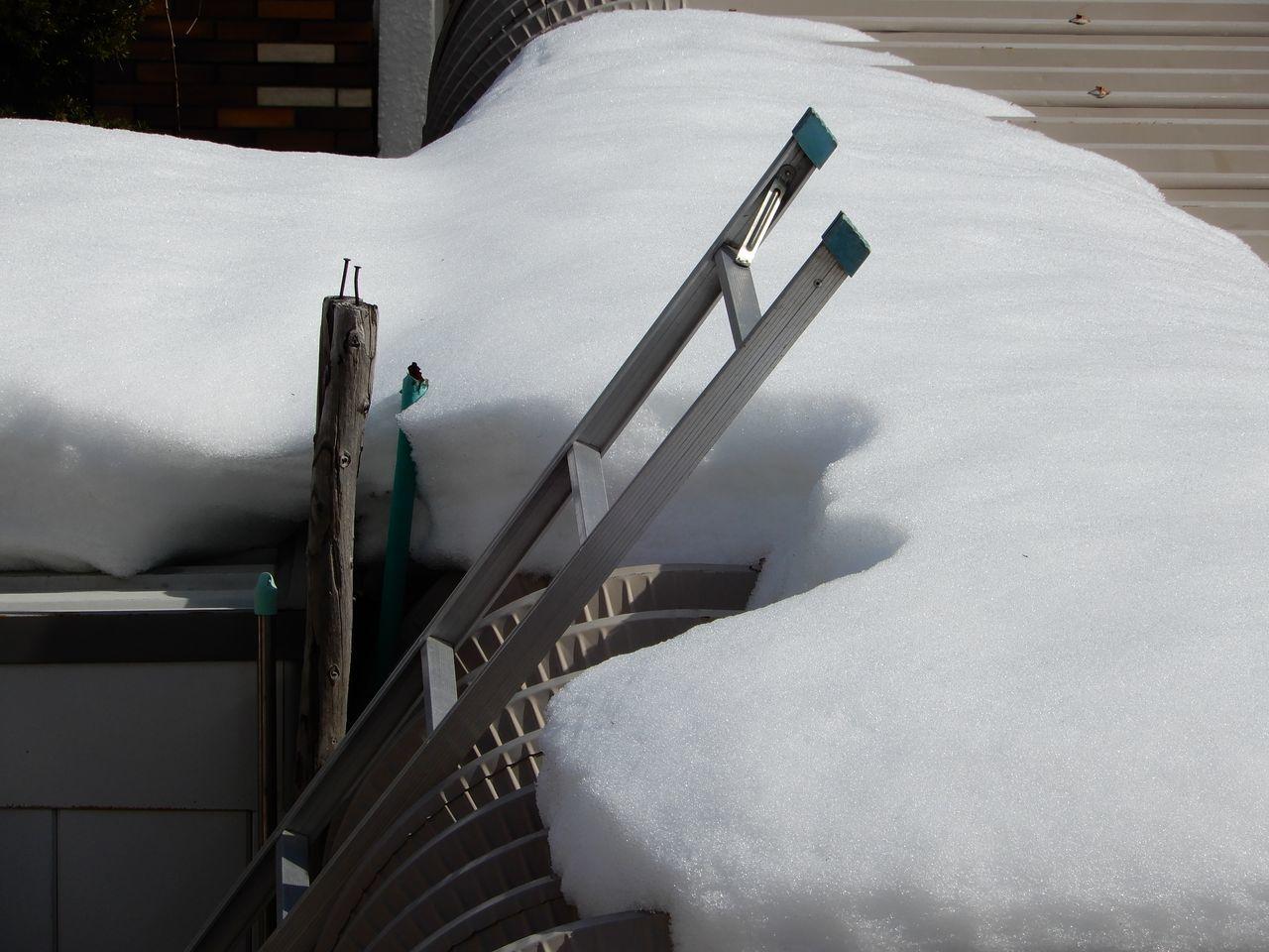 家の前の歩道も車道も積雪がゼロになりました_c0025115_23291310.jpg