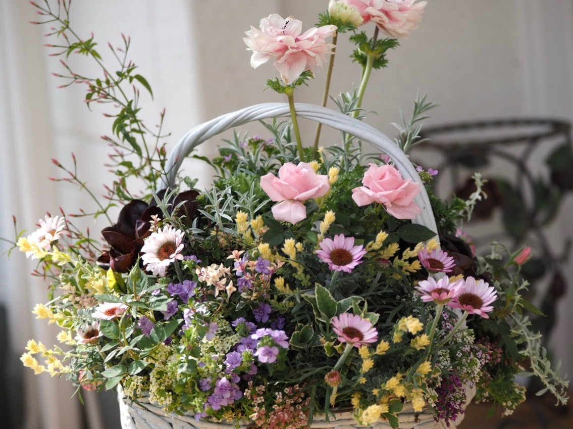春ですね〜 お花がいっぱい咲いてますよ!_f0135940_13103436.jpg