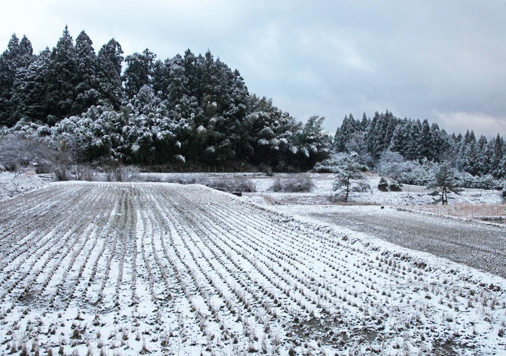宇陀市 戒場(かいば) 雪景色 2_c0108146_21085947.jpg