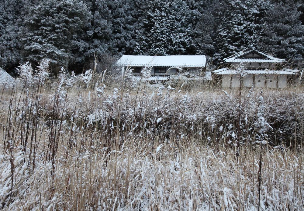 宇陀市 戒場(かいば) 雪景色 2_c0108146_21090766.jpg
