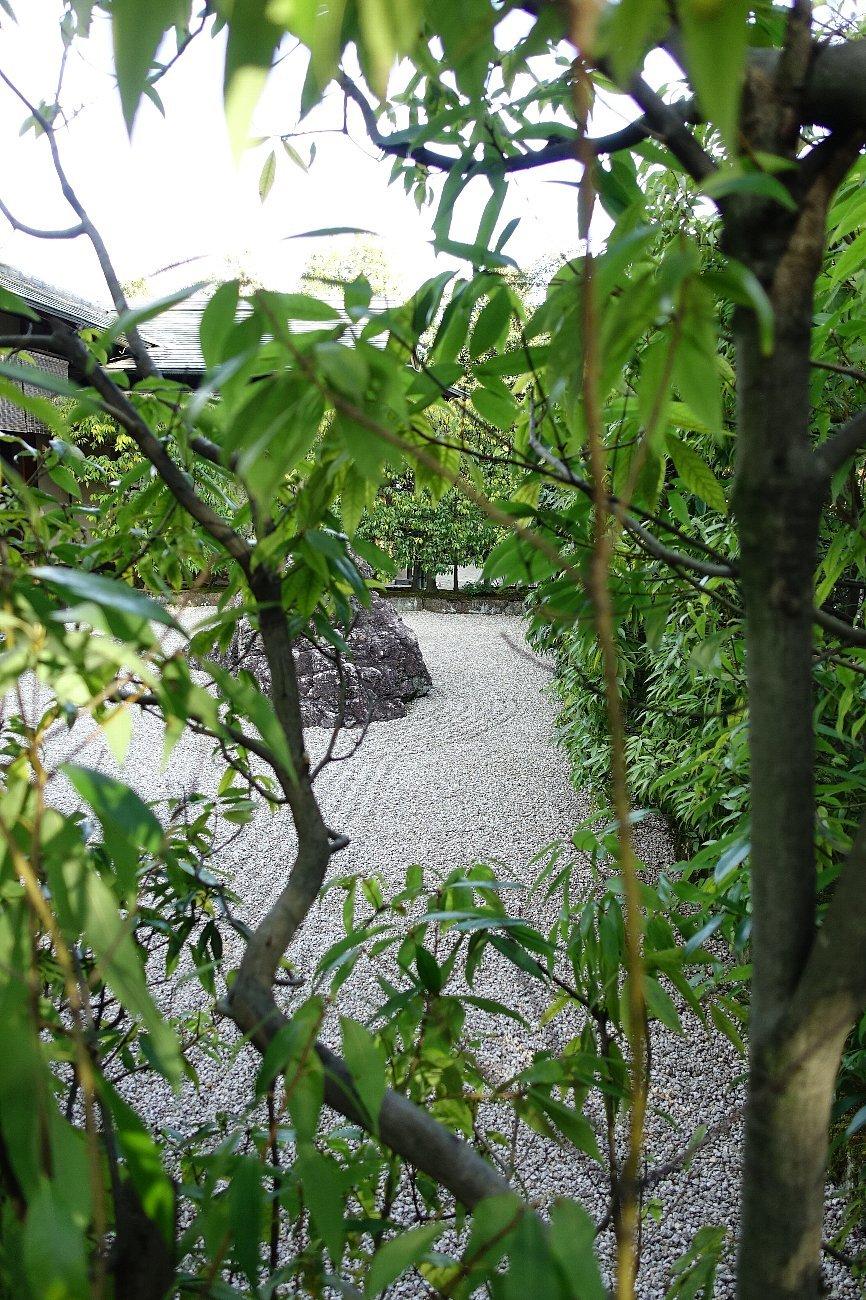 白鳥庭園(その2)_c0112559_08330977.jpg