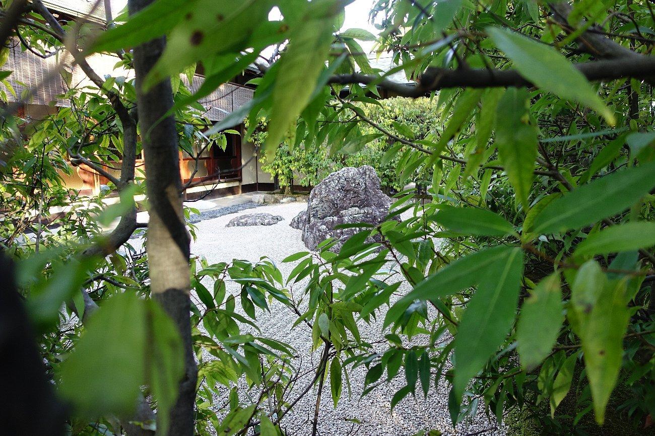 白鳥庭園(その2)_c0112559_08335249.jpg