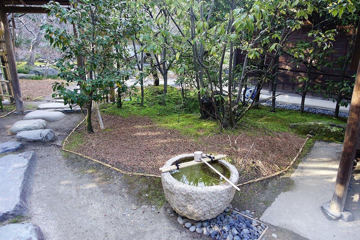 白鳥庭園(その2)_c0112559_08345015.jpg