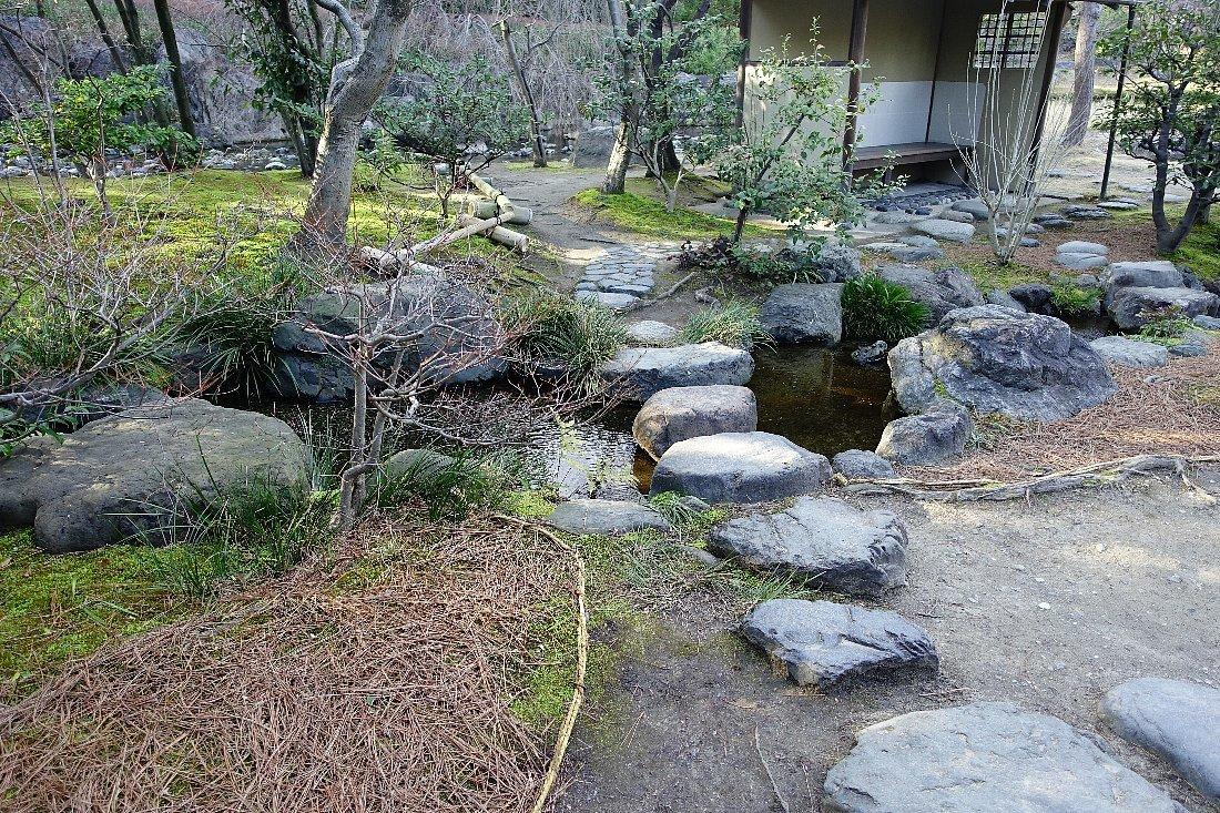 白鳥庭園(その2)_c0112559_08353017.jpg
