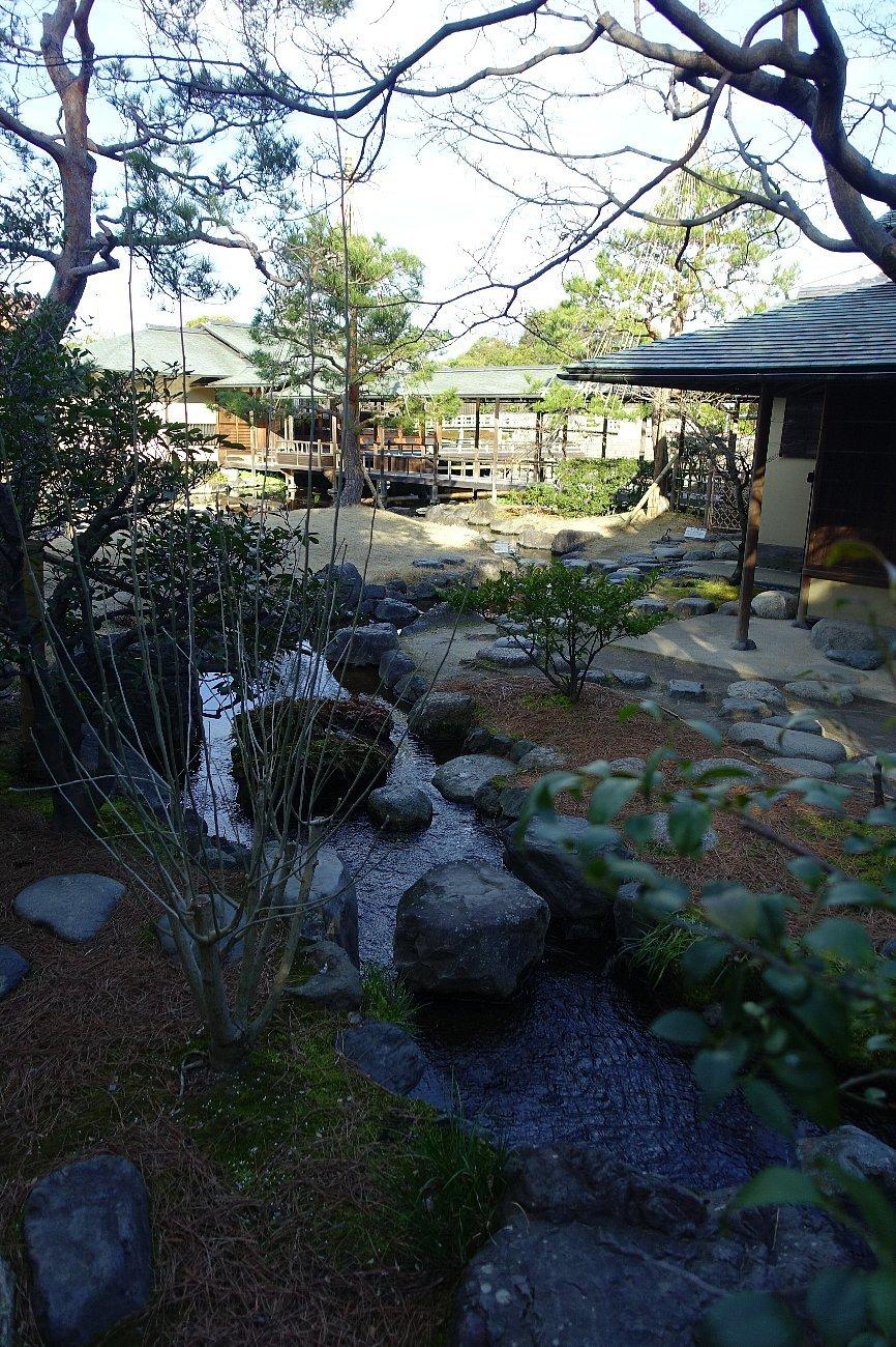白鳥庭園(その2)_c0112559_08373837.jpg