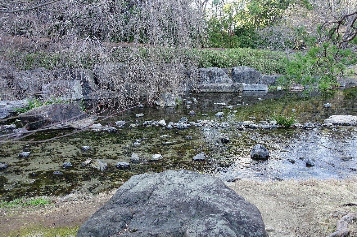 白鳥庭園(その2)_c0112559_08375502.jpg