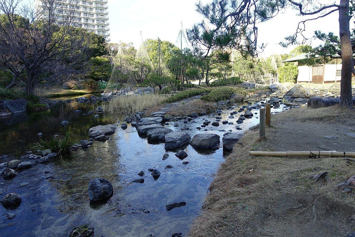 白鳥庭園(その2)_c0112559_08400321.jpg