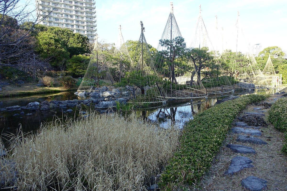 白鳥庭園(その2)_c0112559_08402901.jpg