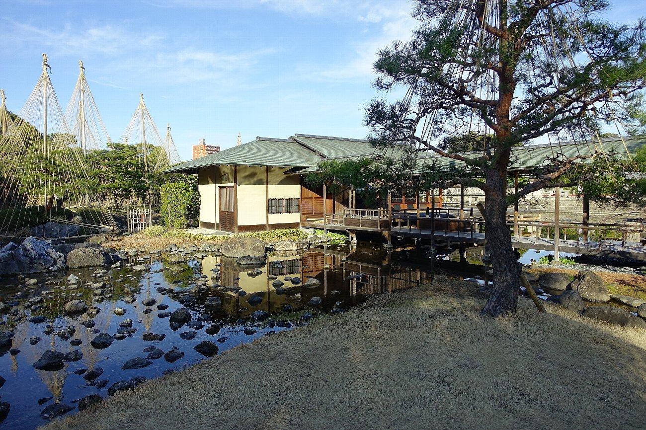 白鳥庭園(その2)_c0112559_08413527.jpg