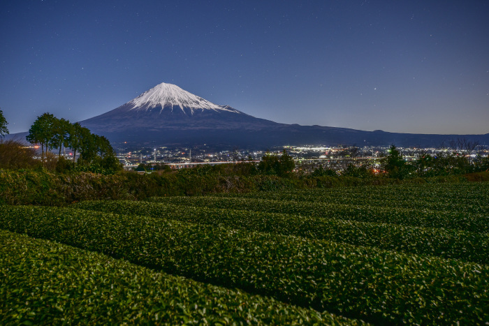 茶畑と富士_a0307264_09434615.jpg