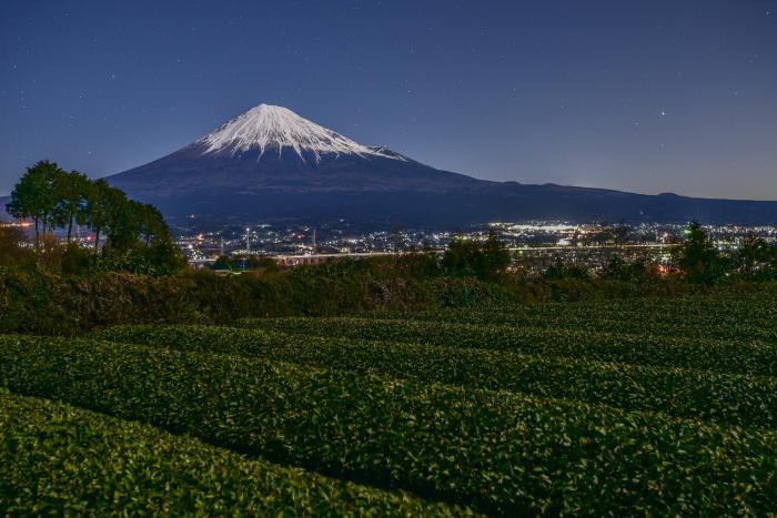 茶畑と富士_a0307264_10230471.jpg