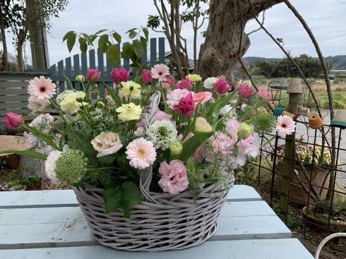 お花いっぱいの保育園の卒園式準備完了_b0137969_20252358.jpeg