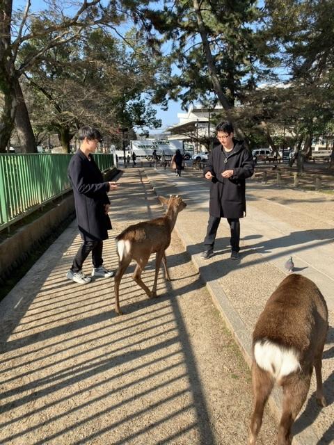奈良へショートトリップ_d0339681_12375374.jpg