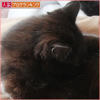 ノロ、再び・・・_a0389088_10590691.jpg