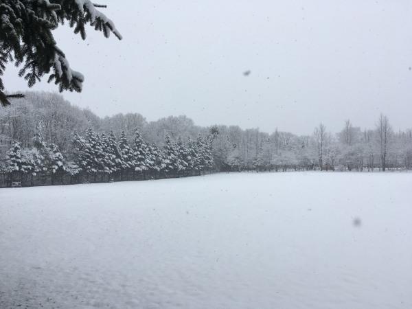 雪が降りました。ノーマルタイヤ危険!(2020年3月14日)_b0174425_18142195.jpg