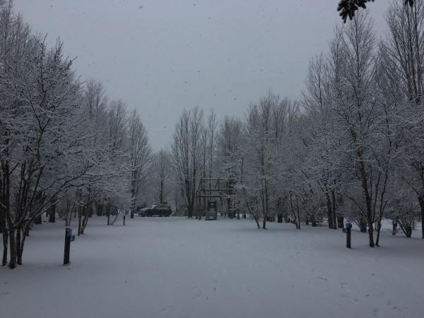 雪が降りました。ノーマルタイヤ危険!(2020年3月14日)_b0174425_18144894.jpg