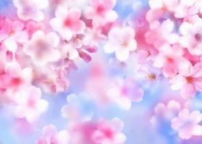 みぞれ模様の中…東京は桜の開花_c0079828_18400608.jpg