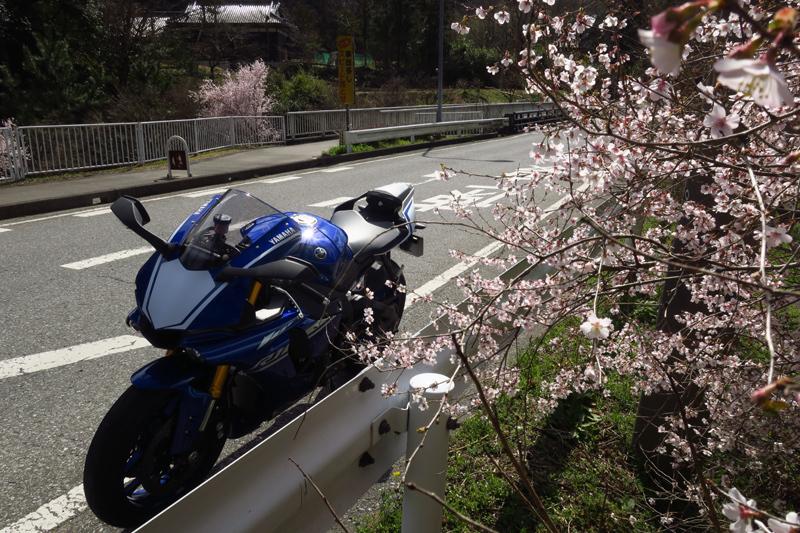 春の房総ツーリング (YZF-R1)_f0126932_18291771.jpg