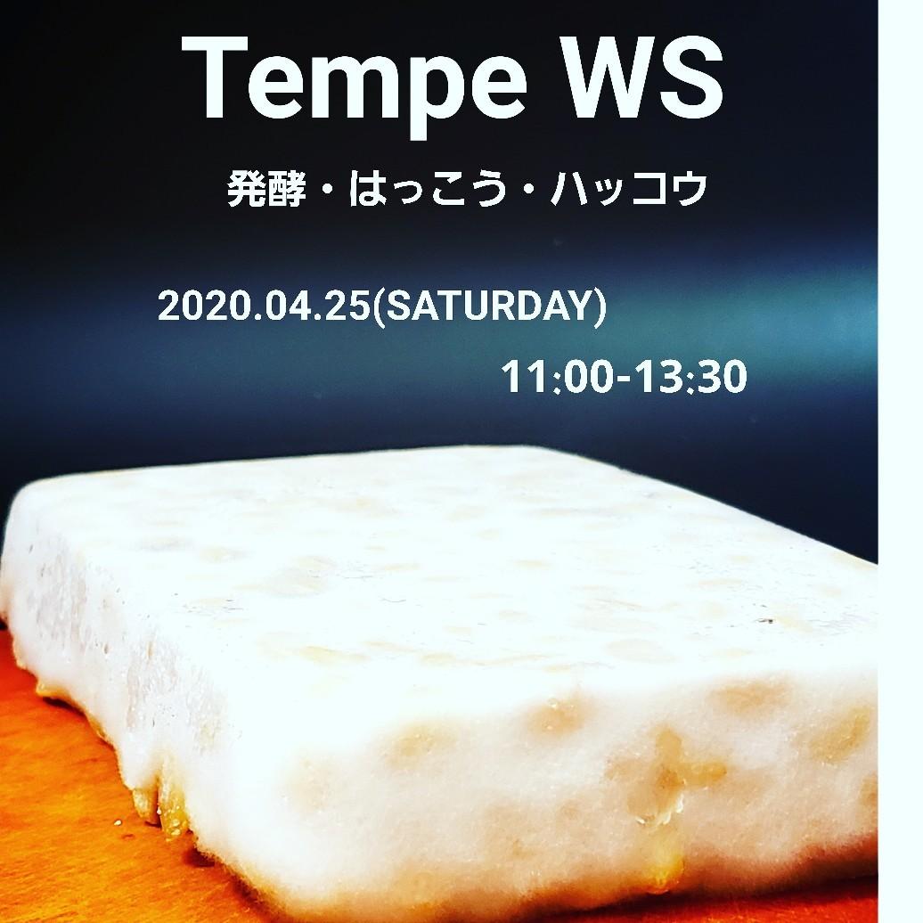 テンペ発酵ワークショップ_a0105740_17174011.jpg