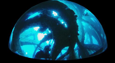 0314  人工魚礁研究会 第36回_b0075059_12595278.png