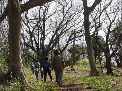 休校期間中子どものジョギング、散歩などOK(3・13文部科学省Q&A)_c0014967_11505143.jpg