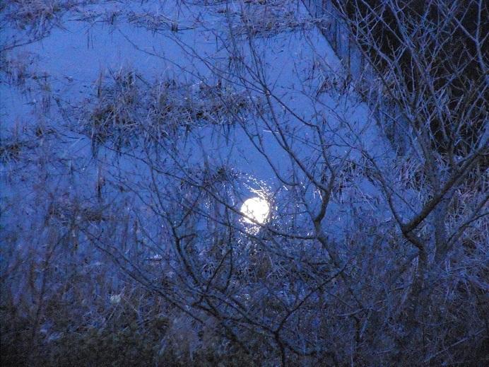 満月は水面にも_e0175370_23010930.jpg