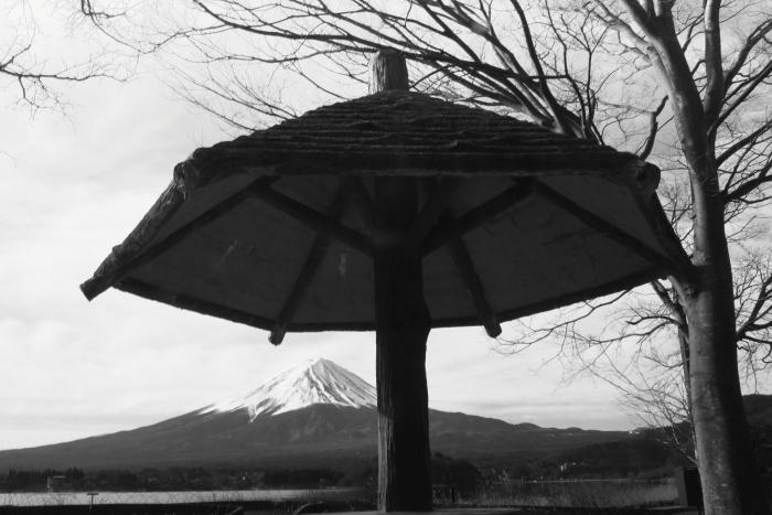 令和2年3月の富士 (5) 大石公園モノクロの富士_e0344396_15092337.jpg