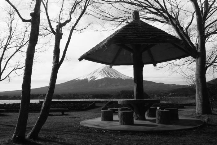 令和2年3月の富士 (5) 大石公園モノクロの富士_e0344396_15093124.jpg