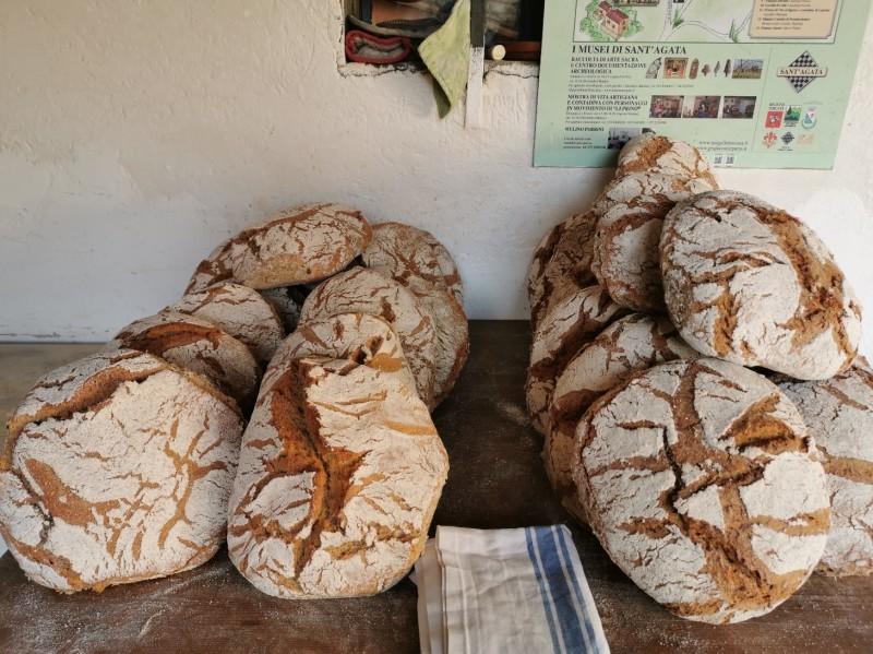 回想:水車小屋でのパン焼き_f0106597_18424248.jpg