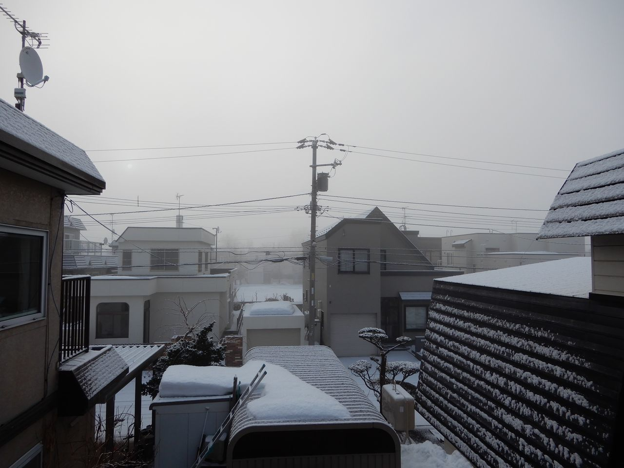 朝は霧、日中は強い日差し_c0025115_21101345.jpg