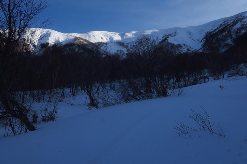 ヤカイ沢からの平標山と仙ノ倉山 (谷川連峰)_f0126932_20081767.jpg